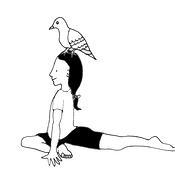 pigeon yoga